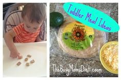 7 Easy, Delicious, and Healthy Toddler Meals! Toddler meals made easy!