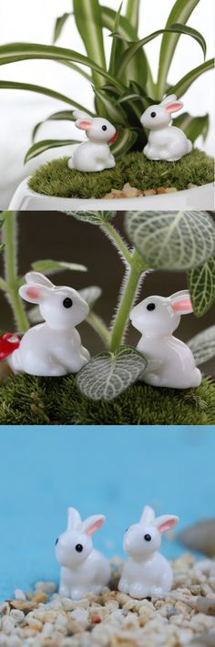 Mini Rabbit Ornament Miniature Figurine 1 Pair $3.00 Free Shipping100% brand new and high qualityFine workmanship is essential micro landscape DIY landscaping!!Cute animals gardening props, suitable for small decorative gardening.Mini, hand-painted, each color will be slightly different.
