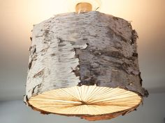 White Birch Chandelier by Danielle Quigley by quigley on Etsy