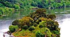Quer uma ilha apenas para si? Descubra uma das mais bonitas de Portugal