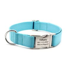 Dog Collar With Personalized Buckle - Tiffany Blue   PupLife Designer Dog Supplies