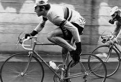 MerckxMolteni