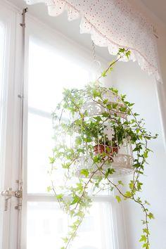 bird cage flower pot at jessica silversaga's house