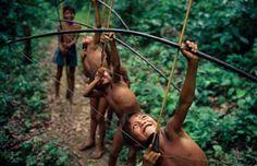 chasse par les indigène