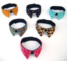 Collars for Mr. Kitty