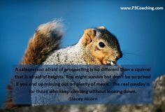 Afraid of Prospecting?
