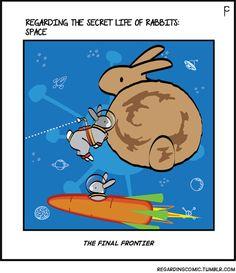 New comics! http://regardingcomic.tumblr.com  #rabbit #bunny #rabbits #comics