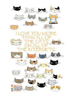 I Love You More Than All The Cats postcard set