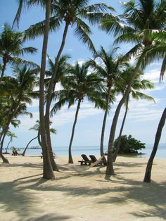 Islamorada Keys, Florida.  Go to www.YourTravelVideos.com or just click on photo for home videos and much more on sites like this.