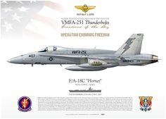 """UNITED STATES MARINE CORPS MARINE FIGHTER ATTACK SQUADRON TWO FIVE ONE VMFA-251 """"Thunderbolts"""" Pilot Maj F. L. Lewis Operation """"Enduring Freedom"""" OEF USS ENTERPRISE (CVN-65) CARRIER AIR WING ONE (CVW-1), 2007 F/A-18C VMFA-251 """"Thunderbolts"""" AB/407 TC-205"""