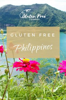 Heading to the Philippines soon? Here are some gluten free Philippines restaurants you can check out in the capital city of Manila. Gluten Free Bagels, Gluten Free Muffins, Free Travel, Travel Tips, Palawan Island, Gluten Free Restaurants, Celiac, Archipelago, Manila