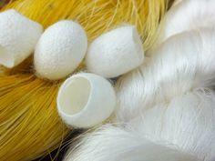 Peace silk cocoons mulberry cruelty-free production / MAVOLU