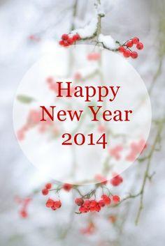 Happy New Year 2014 PARA TODOS!! QUE DEUS ABENÇÕE MUITO NOSSAS VIDAS.