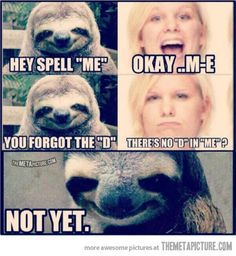 This is horribly funny. That sloth is sooo creepy!