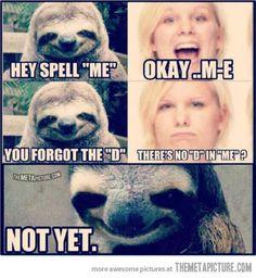haha thats funny