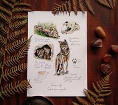 #darkacademia #cottagecore #fairytale #wolf #wolfilustration Wolf Illustration, Ink Illustrations, Botanical Illustration, Wolf Artwork, Watercolor And Ink, Fairytale, Vintage Inspired, My Photos, Prints