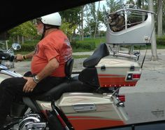Biker Kitty Cat   // funny pictures - funny photos - funny images - funny pics - funny quotes - #lol #humor #funnypictures