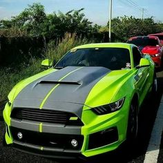 Best Sports Cars : Illustration Description Lime green and black FORD mustang.