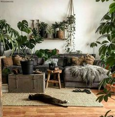 Living Room Decoration With Plants Ideas You'll Like; Living Room Decoration With Plants; Plants In Living Room; Living Room With Plants Deocr; Living Room Designs, Living Spaces, Living Area, Living Rooms, Deco Boheme Chic, Retro Home Decor, Home Design, Design Homes, Design Ideas
