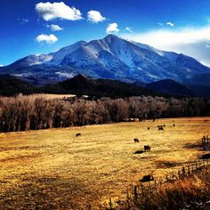 Mount Sopris - Carbondale, CO Of all Colorado HOMES, this is the ONE and ONLY<3