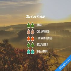 Intuition - Essential Oil Diffuser Blend