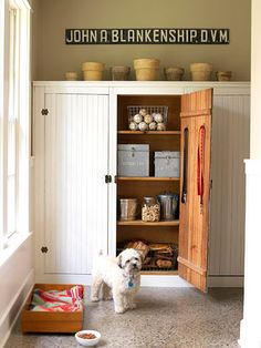 Pet Food Storage - Make it easy on yourself and your pet: Store dog food in a pantry closet near your pooch's eating spot. Here, food is kept in metal bins and treats are in a large jar. Dog Station, Food Dog, Pet Food Storage, Dog Rooms, Dog Store, Home Organization, Organizing, Diy Stuffed Animals, Dog Supplies