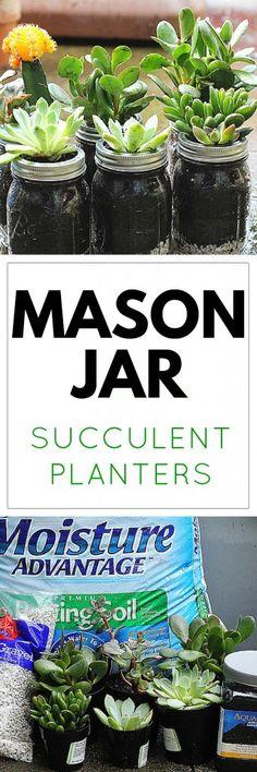 Bring Summer Indoors: Mason Jar Succulent Planters