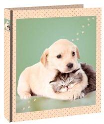 Kroužkový pořadač cm - Pookie & Sweetie č. A4, Labrador Retriever, Dogs, Animals, Labrador Retrievers, Animales, Animaux, Doggies, Animais