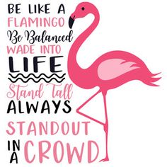 Silhouette Design Store: Be Like A Flamingo Flamingo Art, Pink Flamingos, Flamingo Gifts, Flamingo Pattern, Flamingo Pictures, Best Quotes, Life Quotes, Christmas Arts And Crafts, Pink Bird
