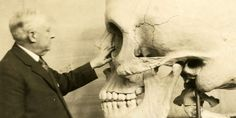 Exquisite, Disturbing Objects From 500 Years of Human Anatomical Science - Wired Science