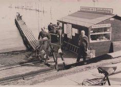 Helsingør bådudlejning, Trykkerdammen, 1960