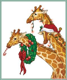 Animals - Giraffes - Animals - Postcards - Christmas Wallpapers, Free ClipArt for Xmas, Icon's, Web Element, Victorian Christmas Photos and Vintage Santa Claus pictures Christmas Animals, Christmas Love, Xmas, Victorian Christmas, Christmas Holidays, Merry Christmas, Giraffe Art, Cute Giraffe, Giraffe Drawing
