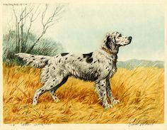 Wood Paul, 1897-1964 | The Willie Walker Wiki
