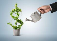 5 Dicas de Finanças Pessoais para não perder o Controlo da sua Vida