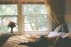Warmth; comfort; color