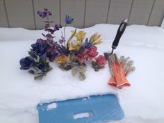 Snow Gardening!?  We think this could really take root here in Minnesota.  Just be sure to wear your gardening gloves to protect your green thumb from frost bite!