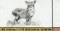 (1) El Definido (@eldefinido) | Twitter