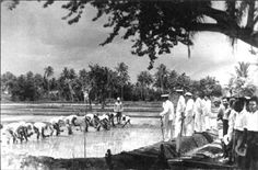 During the occupation of Guam by Japan, officials inspect a rice paddy in Inarajan. Rice paddies were located in Piti, Inarajan and Merizo as part of the agricultural program established by occupation authorities.