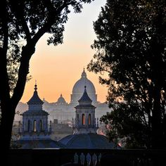 rome skyline with st. peters by hpandi, via Flickr