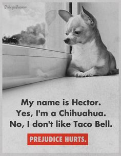 "Being prejudice is an opinion that is not based on reason or actual experience.even though being prejudice is not always negative, majority of the time it is. In this ad, the chihuahua (a Mexican dog) has a caption saying that just because he is a Mexican breed, that does not mean he enjoys tacos (Mexican food). Another example of this is ""black people like chicken"", or ""Portuguese people like fish"". these are not negative statements, but they are prejudice."
