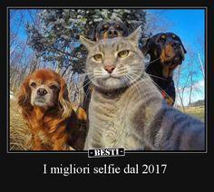 I migliori selfie dal 2017