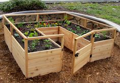 For the die hard gardener, OLT offers a premium 8x8 raised garden bed kit that makes a great addition to any backyard space!