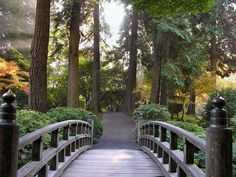 Japanese Garden Elements - Bridges