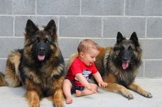 Kids and #dogs .Both are adorable   #dogswithkids