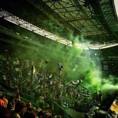 Sporting, meu grande amor, graças a Deus não nasci lampião Ultras Football, Best Club, Sports Clubs, Scp, Football Soccer, Grande, World, Cartoons, Wallpapers