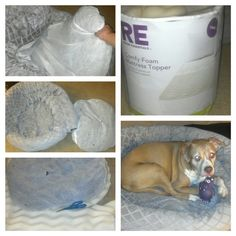 DIY CHEAP ORTHOPEDIC DOG BED!! Dog beds are $$. I used an old bolster dog bed ($ 20 at marshalls). I bought a foam mattress topper at Target for $ 13.00. You have to use a bed with removable insert. Take out the cheap poly insert. Measure the foam with the old insert and cut it to size as many layers as you can get. Here I got 3 layers from 1 topper. You may have to trim them a little more because of the thickness. Insert, zip it up and you have a very happy old doggie and didn't spend $…