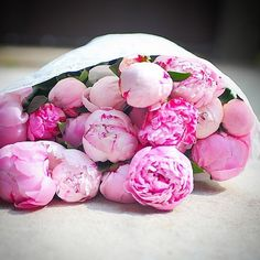 Image de flowers, pink, and roses