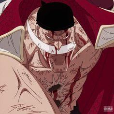 One Piece 1, One Piece Anime, Barba Blanca One Piece, Otaku, Master Chief, Manga, Boys, Wallpapers, Fictional Characters