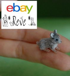 sweet little Pygmy rabbit dollhouse miniature 1:12 scale handmade by Reve