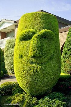 Topiary Happy Face - this would make you smile every time you went outside!
